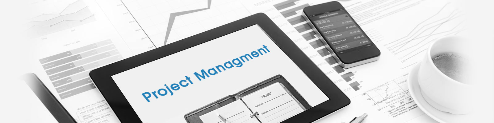 project management solution