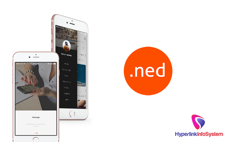 ned app development